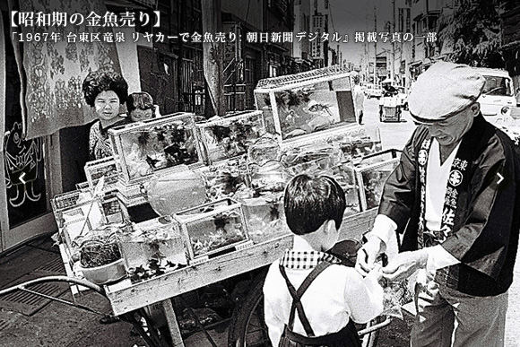 昭和期の金魚売り